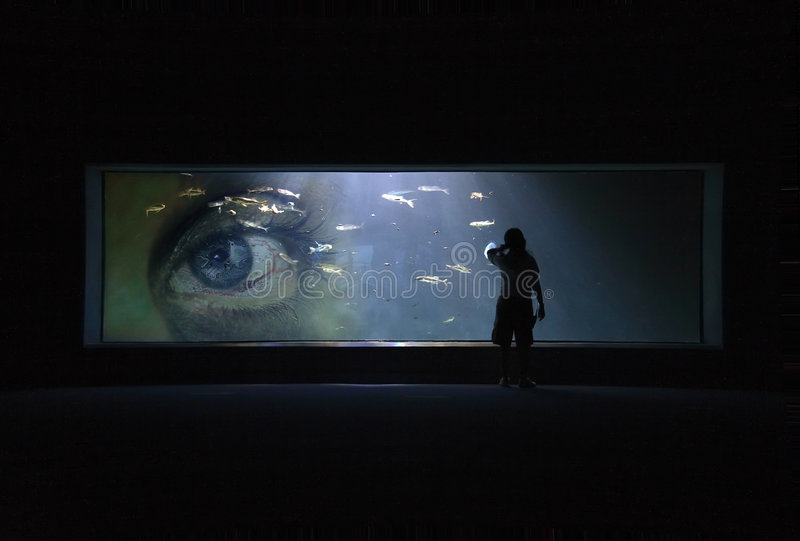 Eye Aquarium. View of a large aquarium window with the silhouette of a person in front of it. Along with the fish swimming inside the aquarium is a superimposed royalty free stock image