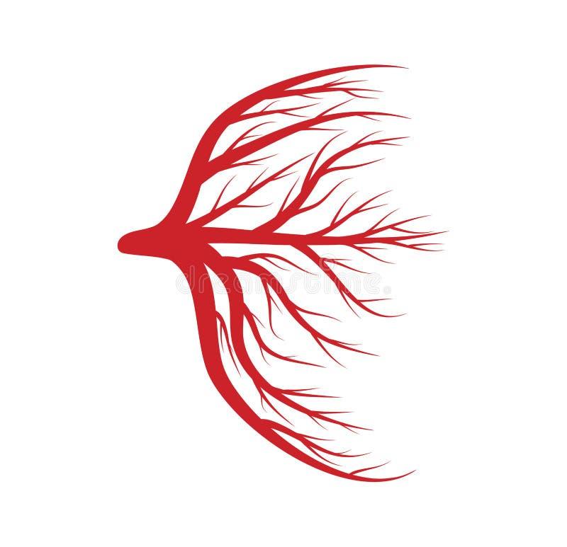 Eye as veias, sangue, projeto do ícone do símbolo do vetor das embarcações ilustração royalty free