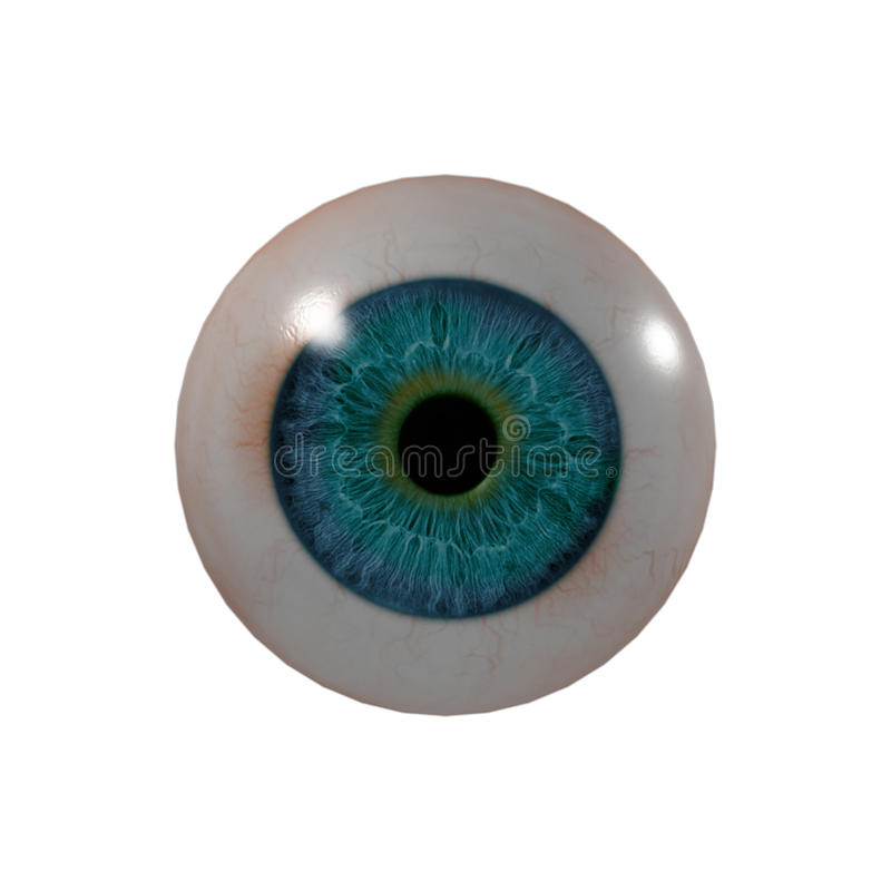 Eye Ball. 3d render Eye Ball - front view vector illustration