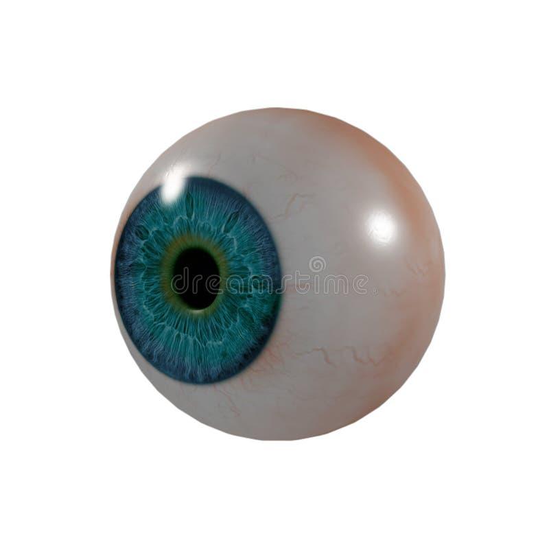 Eye Ball. 3d render Eye Ball - side view vector illustration