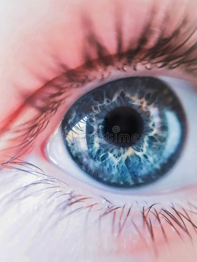 Eye of the beholder. royalty free stock photos