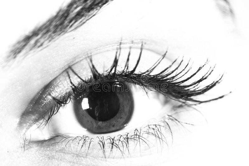 Eye in black and white stock photography