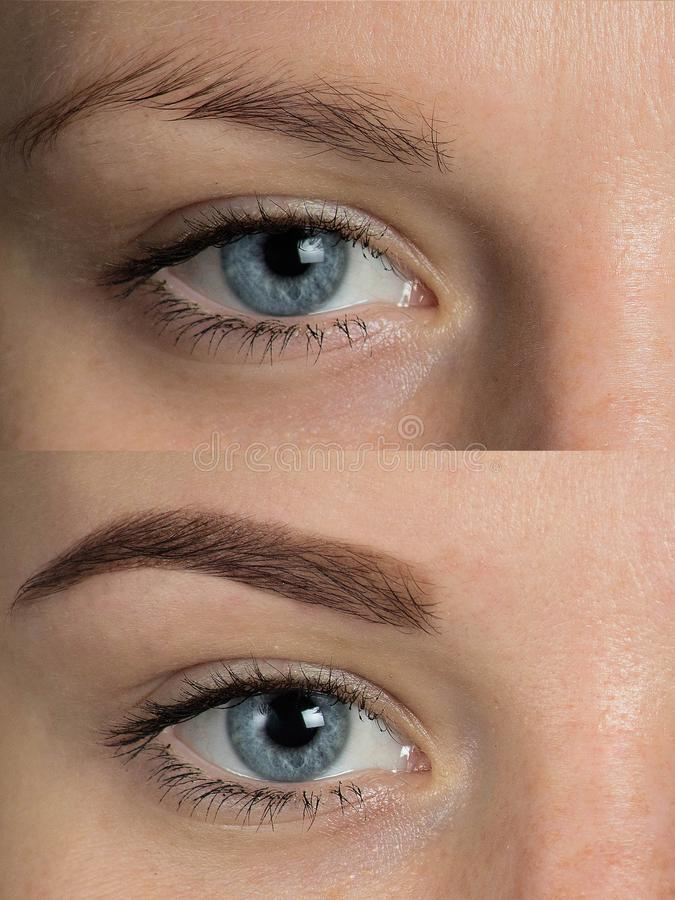 Eye Brows Before After Correction Stock Photo - Image of makeup ...