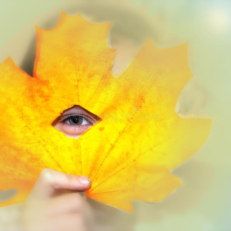 The eye of a cheerful child between parts of a yellow maple leaf, emotions on a sunny autumn day royalty free stock photography