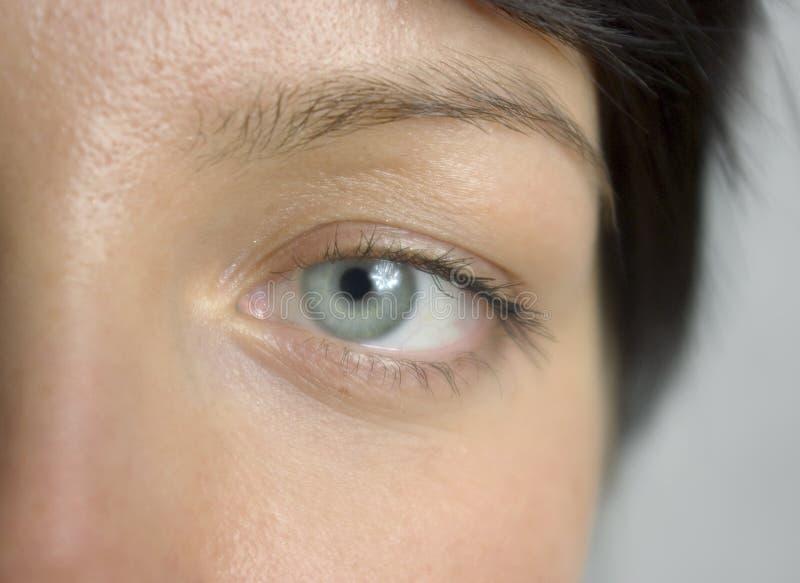 Eye close up royalty free stock image