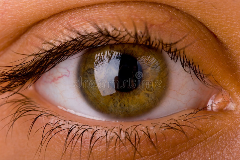 Eye Close Up 4 Royalty Free Stock Images