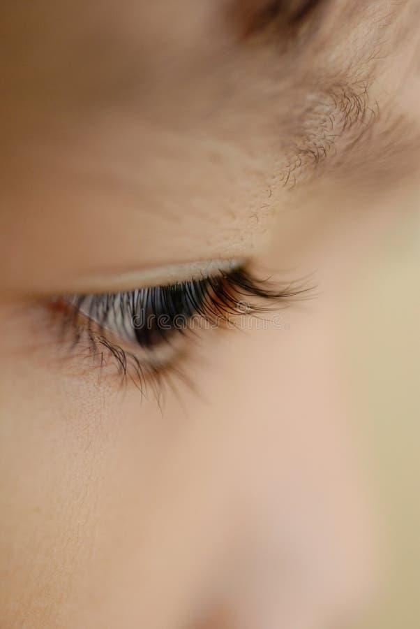 Download Eye close up stock photo. Image of face, eyebrow, eyelash - 6432750