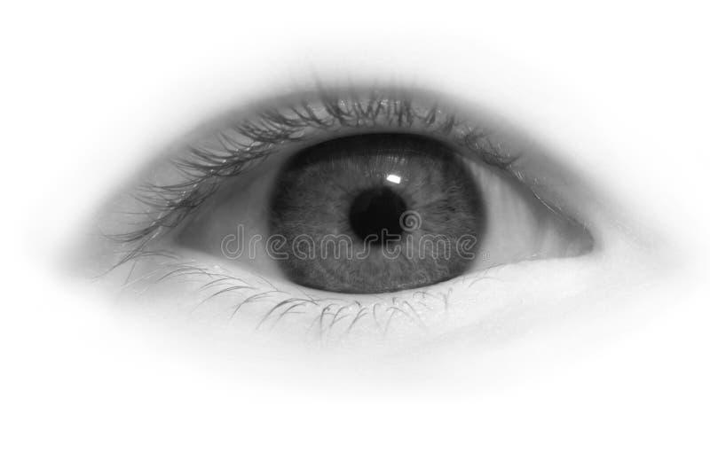 Eye close-up stock photos