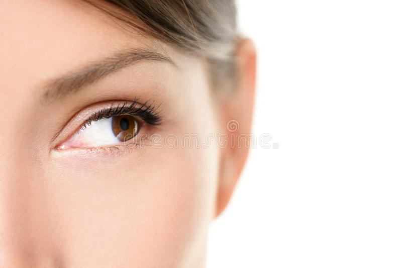 Eye close up - brown eyes looking to side on white. Eye close up - brown eyes looking to side isolated on white background. Mixed race Asian Caucasian woman royalty free stock image