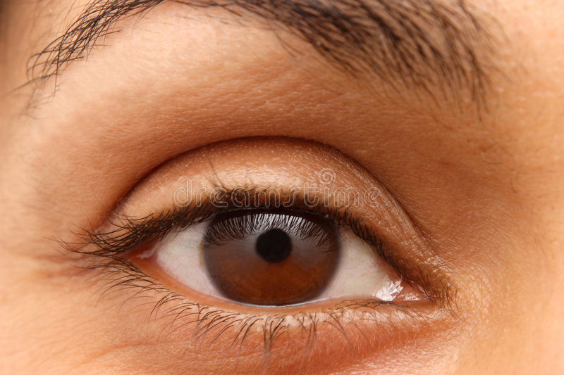 Eye closeup of an Indian woman royalty free stock image