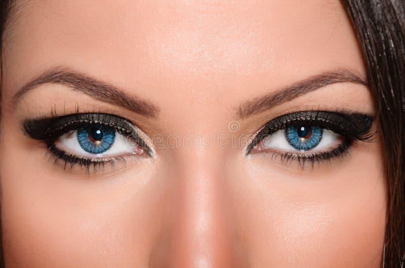 Download Eye Contact Stock Photo - Image: 28029260