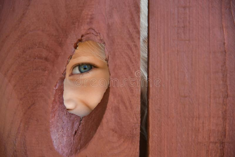 The eye of the girl looks through a hole in the fence.  stock image