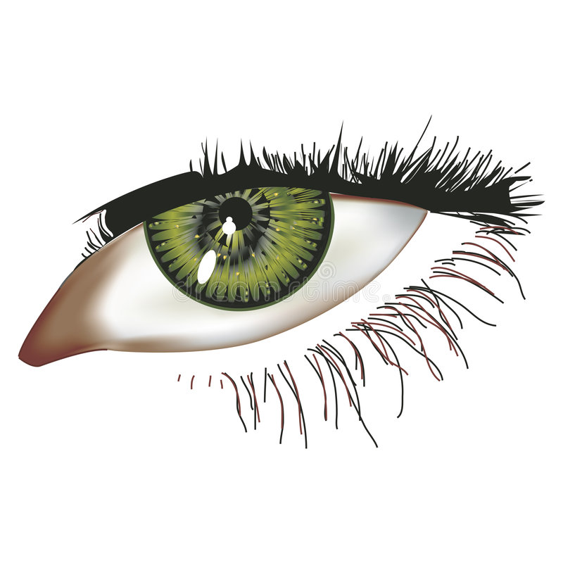 Download Eye illustration stock illustration. Illustration of cornea - 1893804