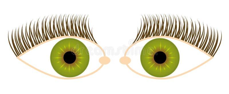 Download Eye illustration stock vector. Image of human, beauty - 7677192