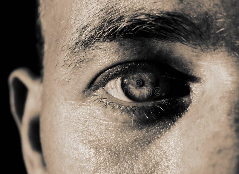Download Eye iris stock photo. Image of gaze, skin, focusing, glare - 4317252