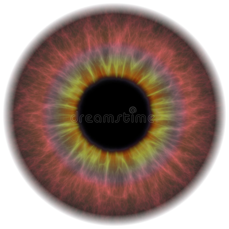 Eye Iris. A highly detailed iris section of the human eye royalty free illustration