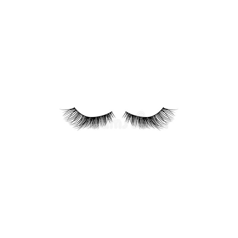 Eye lashes vector icon. Lashes vector stock illustration