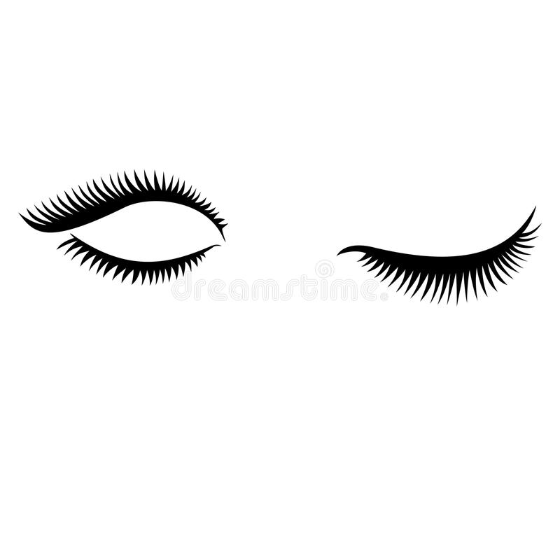 Eye lashes vector . Lashes vector. Open and close lashes royalty free stock images