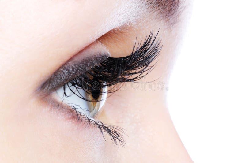 Eye with a long curl false eyelashes stock photo