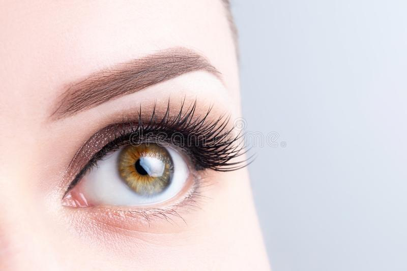Eye with long eyelashes, beautiful makeup and light brown eyebrow close-up. Eyelash extensions, microblading, tattoo, permanent,. Cosmetology, ophthalmology stock image