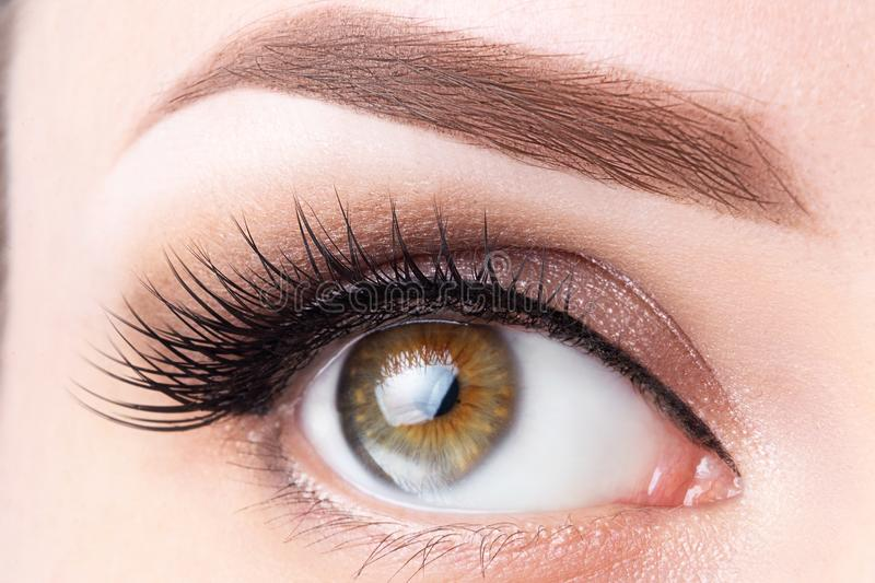 Eye with long eyelashes and light brown eyebrow close-up. Eyelashes lamination, microblading, tattoo, permanent, cosmetology,. Ophthalmology concept royalty free stock images
