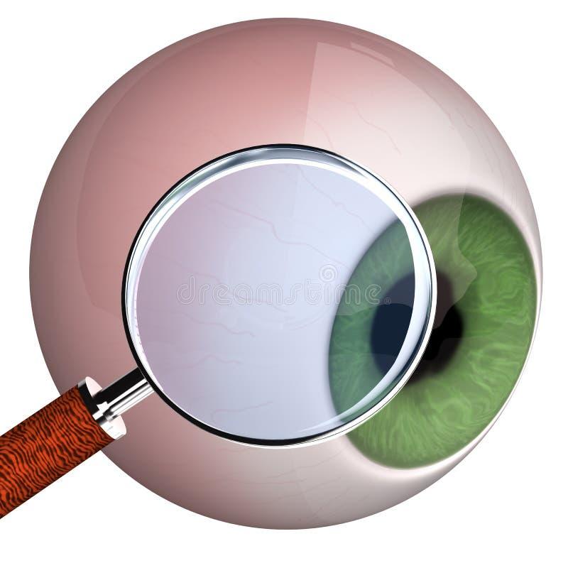 Download Eye With Loupe stock illustration. Illustration of chorioretinal - 27138729