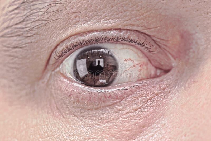 Eye. Male eye extreme closeup front view stock photography