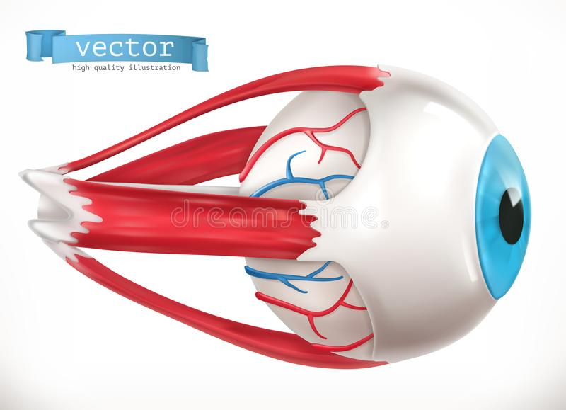 Eye. Medicine 3d vector icon. On white background royalty free illustration
