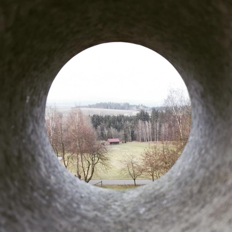 Eye in nature royalty free stock photography