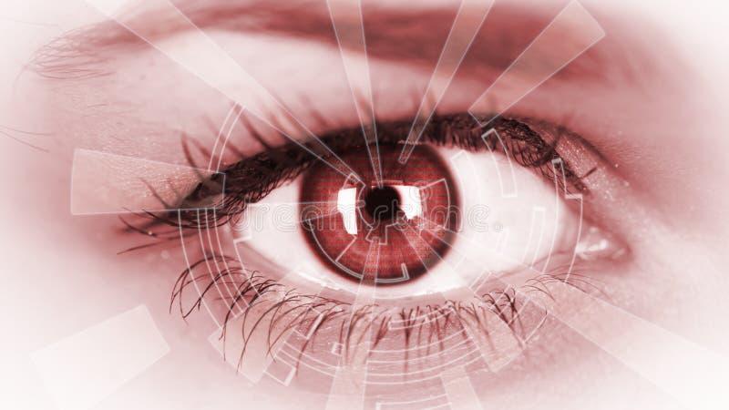 Eye viewing digital information. stock image