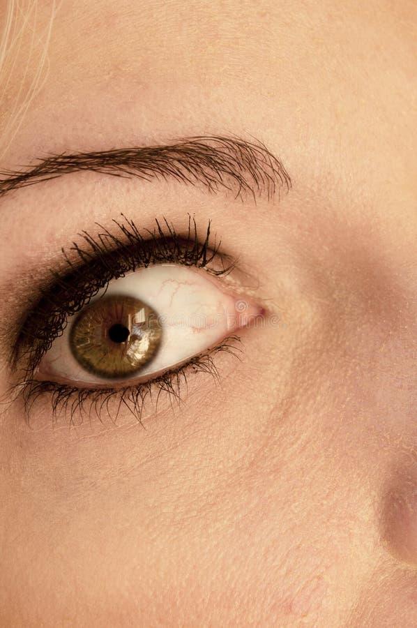 Eye wide open. Closeup of a woman's eye stock image