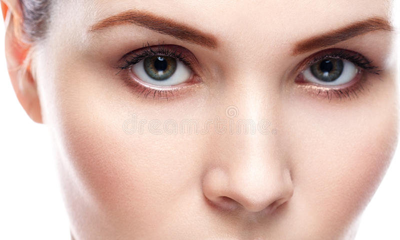 Eye woman eyebrow eyes lashes royalty free stock photos