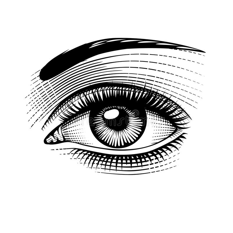 Eye of woman retro engraving. Eye of woman. Vintage engraving stylized drawing. Vector illustration royalty free illustration