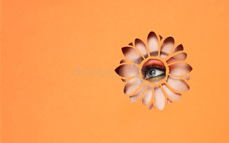 Eye of a young beautiful woman with a beauty make-up stock photos