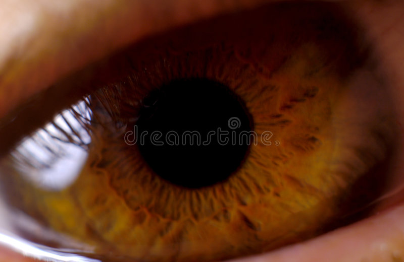 Download Eyeball stock image. Image of vision, macro, cornea, abstract - 108239