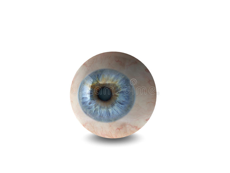 Eyeball. High quality 3d eyeball illustration stock illustration