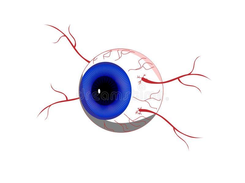 Download Eyeball stock vector. Illustration of symbol, design, abstract - 5352679