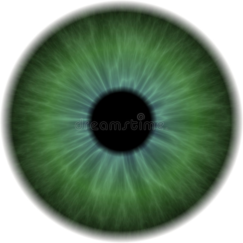 Eyeball. Clip Art Isolated on a White Background vector illustration