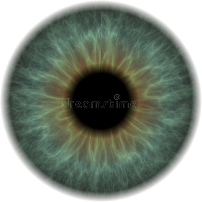 Eyeball. Clip Art Isolated on a White Background stock illustration