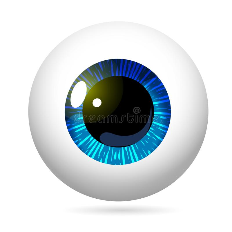 Eyeball Blue Iris. Human eye front view close-up, cornea, retina, pupil. Blue iris. Eyeball icon design isolated on white background. Realistic Vector royalty free illustration