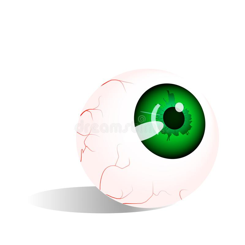 Eyeball with green pupil, vector graphics. royalty free illustration