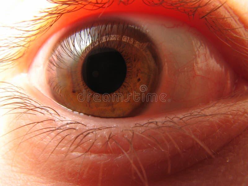 Eyeball reflection royalty free stock photo