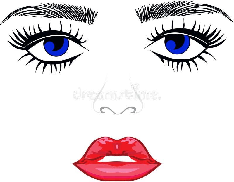 Eyebrows Eyes Lips. Eyebrow Blue Eyes Lips royalty free illustration