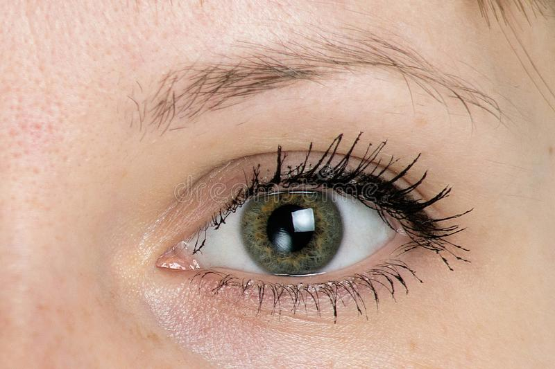 Woman eye close up stock images