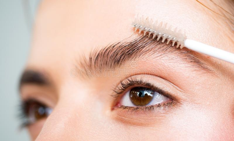 Eyebrows close up. Beautiful girl applies brow gel to her eyebrow. Close up portrait of young caucasian woman doing her stock images