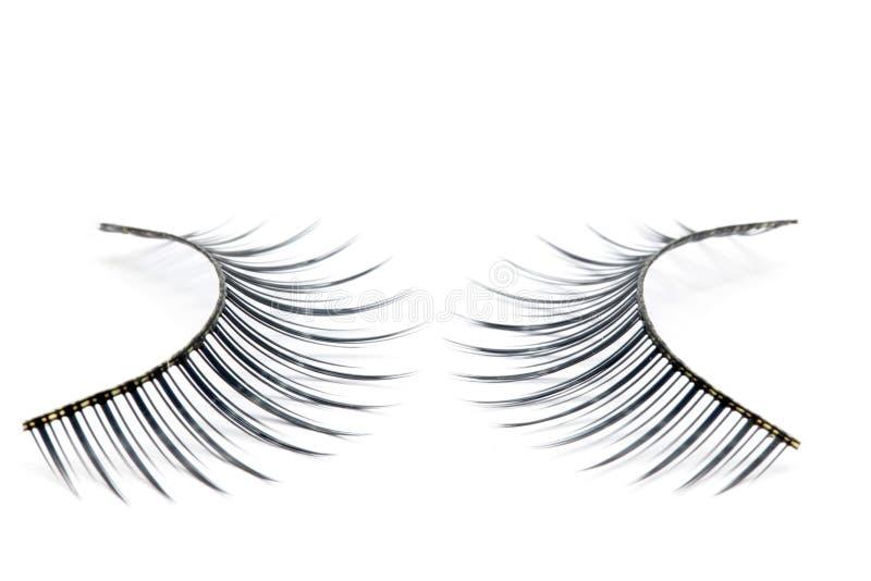 eyelash μόδα στοκ φωτογραφία με δικαίωμα ελεύθερης χρήσης