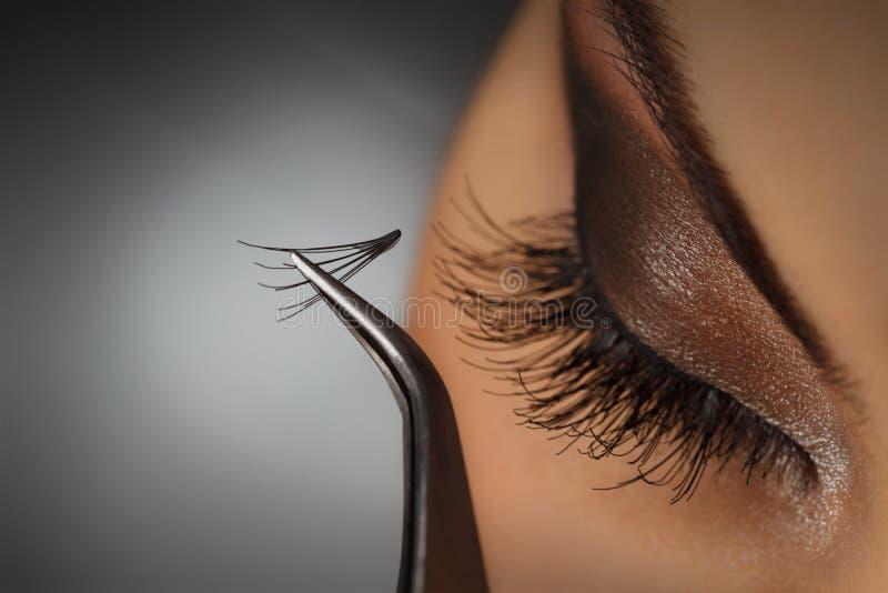 Eyelash extension royalty free stock photo