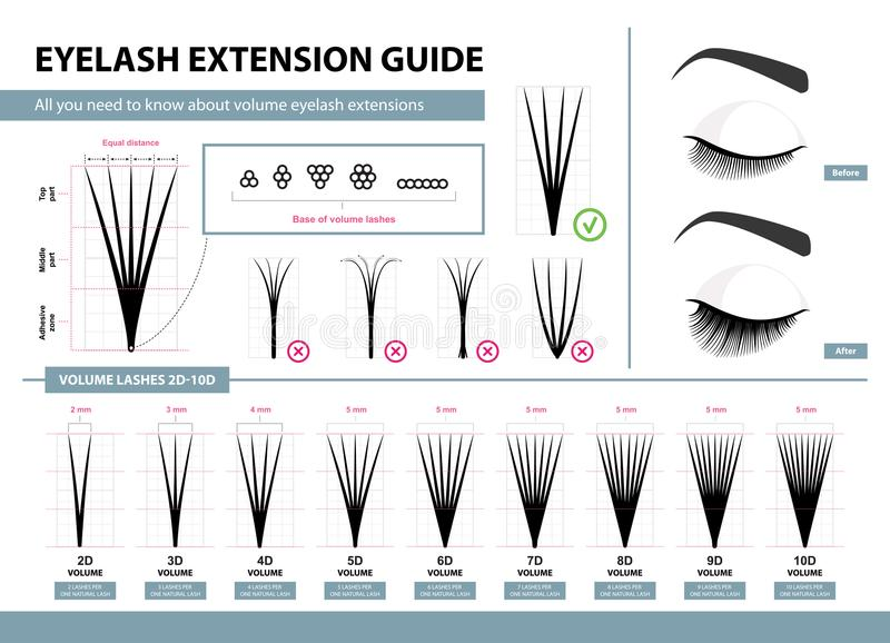 Eyelash extension guide. Volume eyelash extensions. 2D - 10D Volume. Tips and tricks. Infographic vector illustration. Template for Makeup and cosmetic royalty free illustration