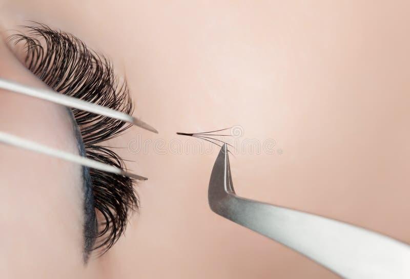Eyelash extension procedure close up. stock photo
