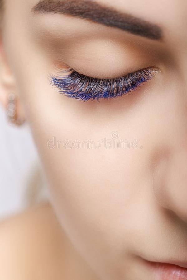 Eyelash Extension Procedure. Woman Eye with Long Blue Eyelashes. Ombre effect. Close up, selective focus. Eyelash Extension Procedure. Woman Eye with Long royalty free stock photography